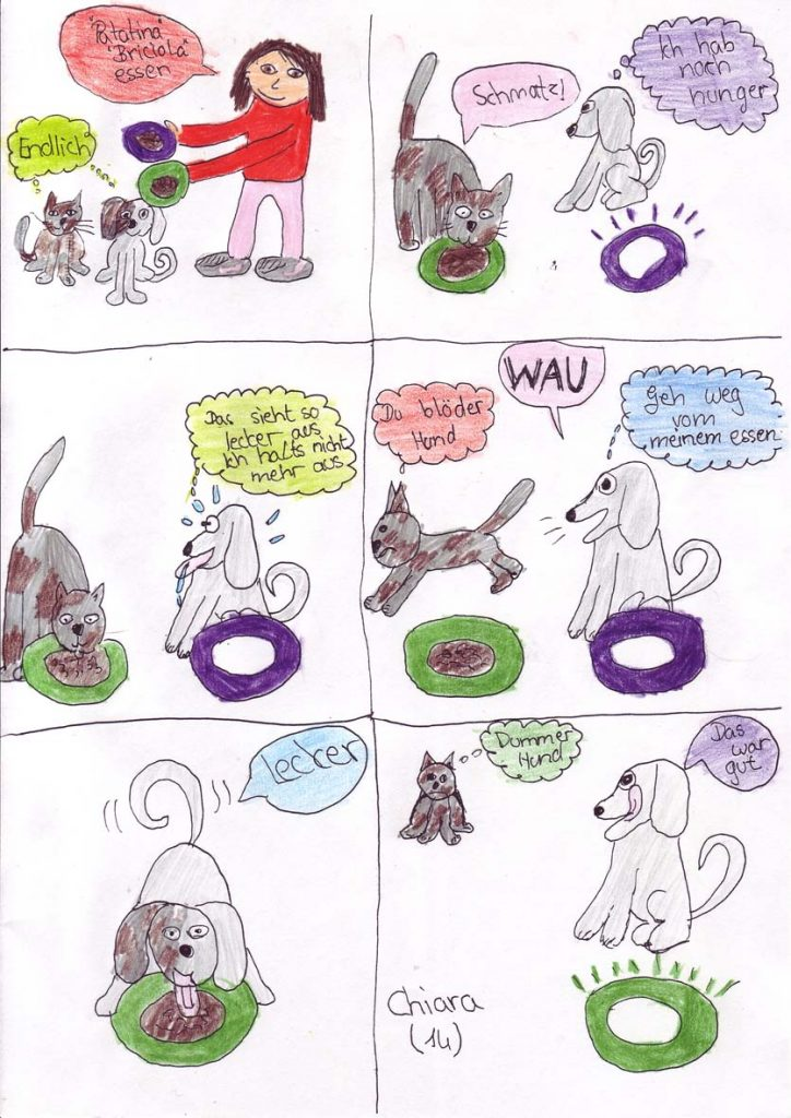 Katze gegen Hund - von Chiara